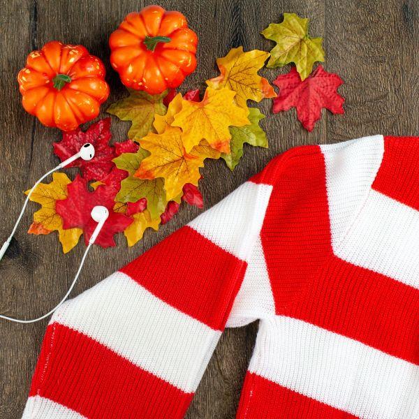 Još jedna jesen protiče u znaku ovog modnog komada: Žene širom sveta ga obožavaju! (foto)